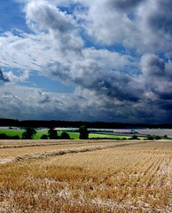 Harvest fields (tina negus) Tags: sky clouds landscape harvest lincolnshire fields keisby