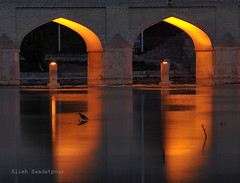 I wish you were here (Alieh) Tags: bridge light reflection bird water river persian iran you persia cousin much iranian archway miss  esfahan far maryam isfahan   aliehs alieh      saadatpour