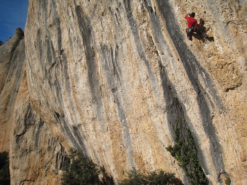 Paco on 8b - no 6