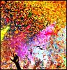 sept08 097e2flickr (goodmorningscarecrow) Tags: music colors utah concert ut hand arm live joy band confetti saltlakecity alive ros sigur raised saltair