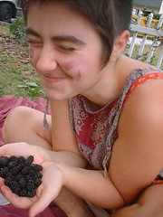 Gathering Mulberries