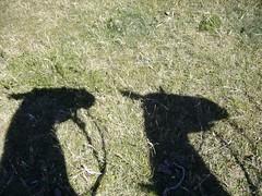 Bariloche - Cabalgata - ombre