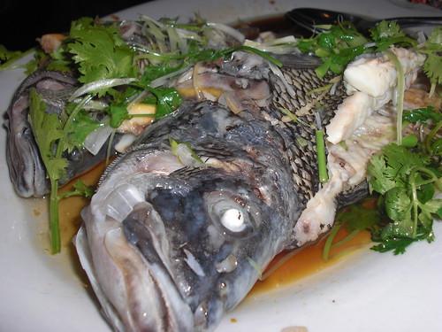 Fresh killed fish