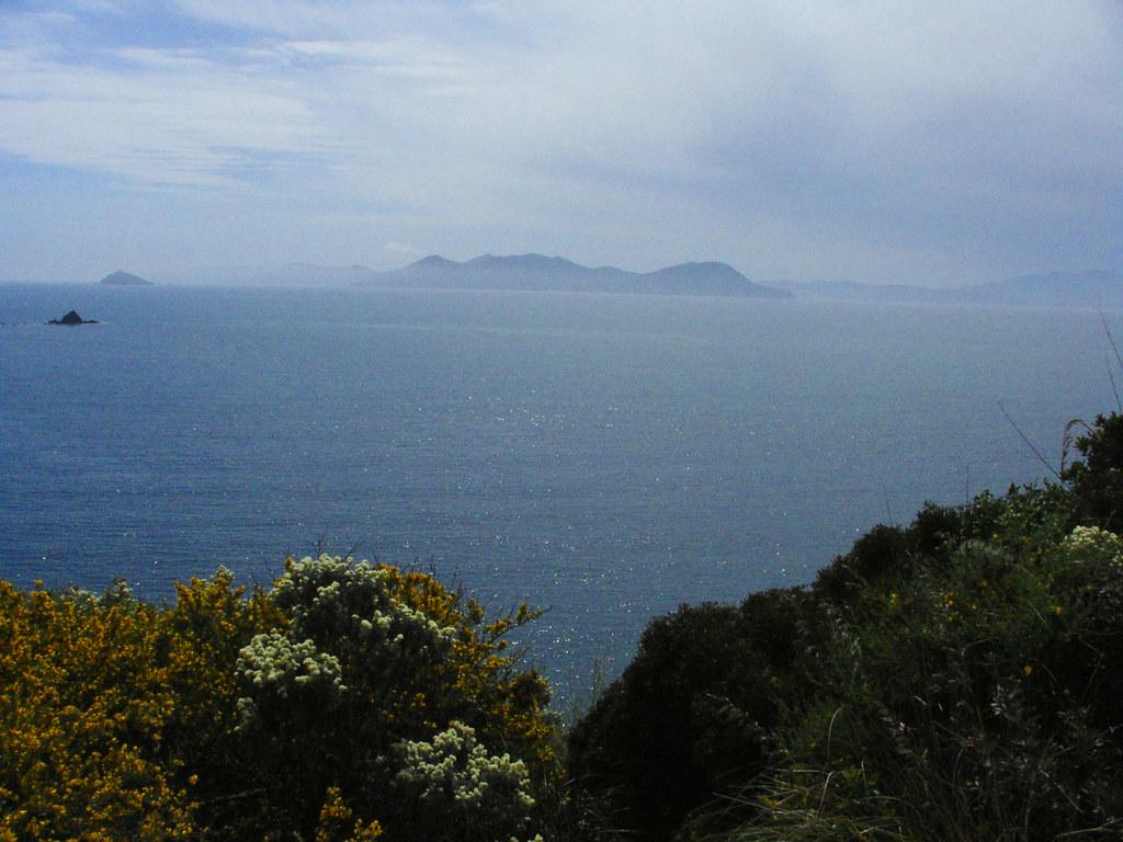 Vista sull'Isola d'Elba