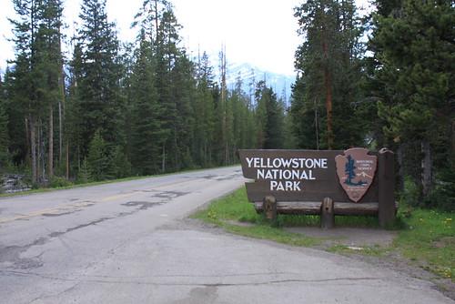 Montana June 208 054