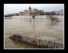 Budapest, Hungary, flood (Dörmögő Dömötör) Tags: primavera water spring agua europa flood budapest parliament duna parlament ungarn danube magyarország hungría parlamento danubio víz hzngary