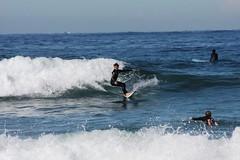 Harry Dyce (LRSA Photos) Tags: beach surf surfer sydney australia narrabeen longreef northernbeaches collaroy lrsa harrydycelrsa