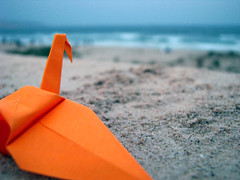 A tribute to loneliness (Mzen from Hadhramout) Tags: sea orange paper square loneliness crane yemen staring pondering mazen mukalla    hadhramout origrami