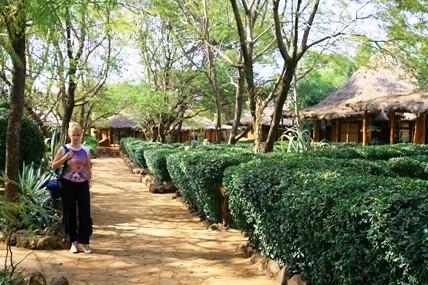 Моё второе пришествие в Кению, часть 1; авт. DIK DIK