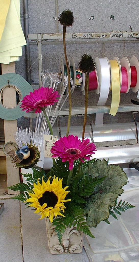 gerber daisies billy balls and mushroom