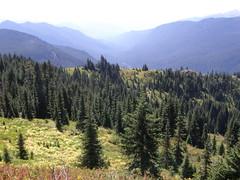 View coming down Shriner Peak trail.