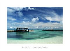 Maldive '06 - White Sand (Locatelli Alessandro) Tags: white sand whitesand maldive grouptripod