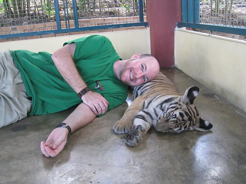 Resting with a tiger cub