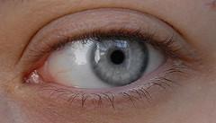 Schau mir in die Augen Kleiner (simonbolanz) Tags: makro auge nahaufnahme