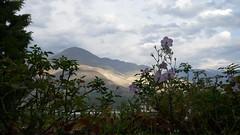 Gilgit (carolina75011) Tags: pakistan karakoram hunza