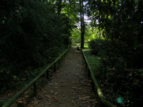 """Forest path • <a style=""""font-size:0.8em;"""" href=""""http://www.flickr.com/photos/29952986@N05/2958794864/"""" target=""""_blank"""">View on Flickr</a>"""