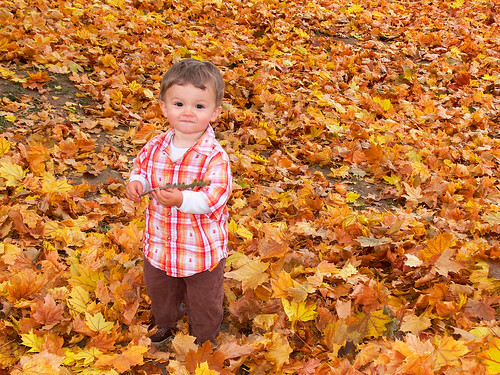 Autumn Boy