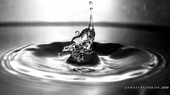 The Dark Plunge ([ JARED ]) Tags: water interesting stainlesssteel waterdrop sink drop crater faucet droplet splash 2008 timewarp plunge waterdroplet frozenintime artisticexpression stainlesssteelsink liquidsculpture canons3is canonpowershots3is mywinners highspeedcapture chdk allbest november62008