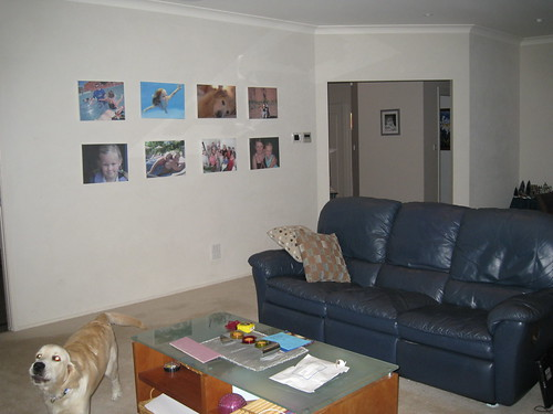 Photos on wall