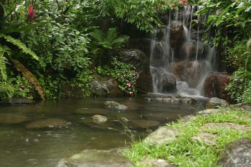 你拍攝的 三富花園農場:這個小瀑布真的很小。