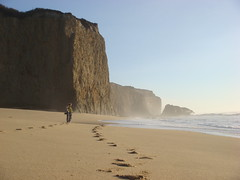 MartinsBeach_2007-103 (Martins Beach, California, United States) Photo