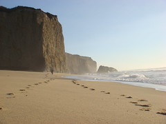 MartinsBeach_2007-106 (Martins Beach, California, United States) Photo