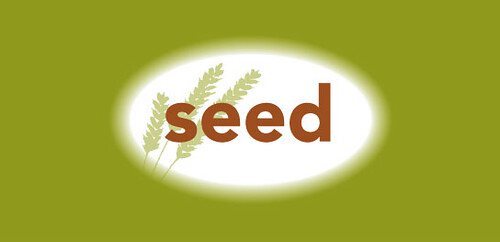 seed venice beach