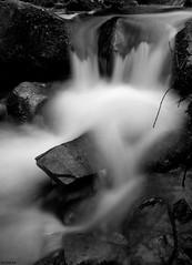 avern (conopium) Tags: bw fall water river bn catalunya aigua muntanya cascada riu roques montseny llargaexposició catarada