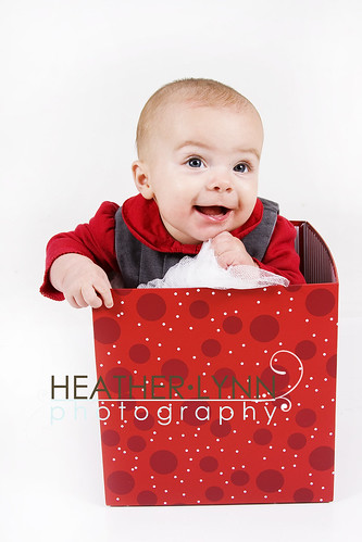 Christmas Portraits E 021