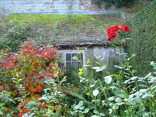 sissinghurst shed, autumn by A writer afoot.