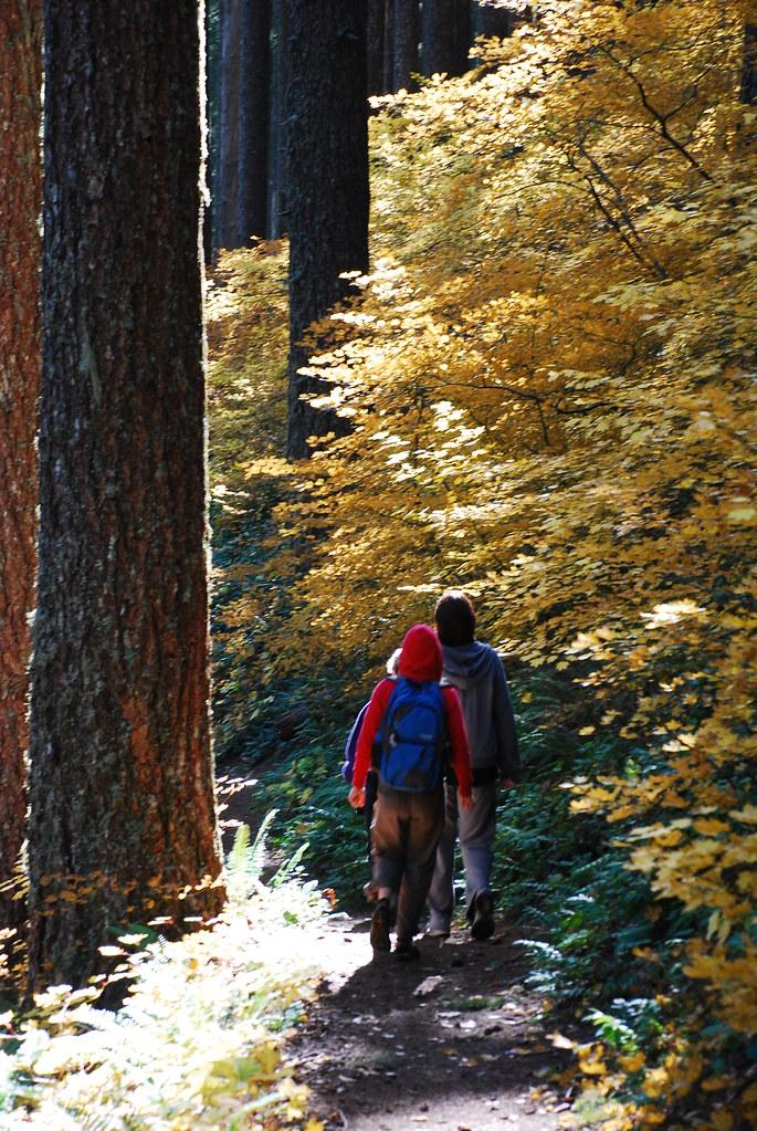 Mary's Peak Hike