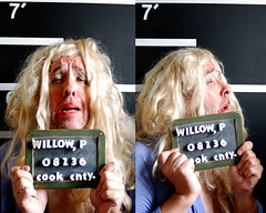 """""""Pussy Willow"""" Mugshot, Chicago, 2009 (jeffery c johnson) Tags: portrait people urban usa chicago america illinois midwest comedy sad humor pussy criminal prostitution willow crime tranny transvestite mugshot improv caught arrest pussywillow cabletv colortv mrtwinkie"""