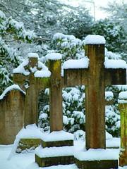 Picture 069 (Stephen R. Sizer) Tags: trees christchurch church graveyard churchyard virginiawater stephensizer
