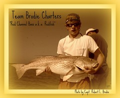 Mississippi Charter Boat Fishing - Austin McAllister Of D'Iberville, MS Landed This Bull Redfish While Fishing With Capt. Robert L. Brodie of TEAM BRODIE CHARTERS - Photo By Capt. Robert L. Brodie of TEAM BRODIE CHARTERS (teambrodiecharters) Tags: red fish fishing fisherman louisiana marsh redfish angler reddrum channelbass charterboat spottail guideservice lighttackle louisianamarsh marshfishing austinmcallister redchannelbass juniorangler youngangler
