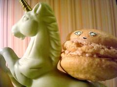 Macaron on Unicorn