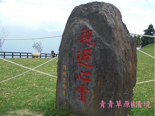 青青草原CIMG2710