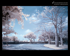 GBwallpaperHIR01 (callbusybiz) Tags: life wallpaper ir nikon style filter gb infrared d200 hoya  r72     hir