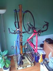 Bike Tree 7 - Finished