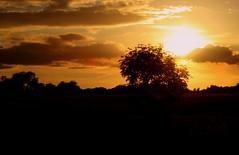 Nantwich (annick777 aka elia grace) Tags: sunset england sun soleil searchthebest coucher angleterre soe nantwich anawesomeshot amazingamateur thatsclassy proudshopper damniwishidtakenthat