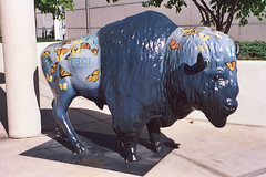 Butterfly Buffalo (aimeedars) Tags: aimeedars summer 2004 buffalo spiritofthebuffalo oklahoma ok publicart msh06092 msh0609 paintedbuffalo paintedsculpture painted statue