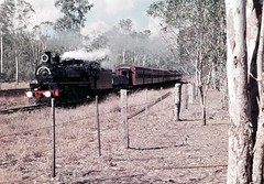 branch special (Leonard J Matthews) Tags: railway c17 steam locomotive engine train passenger rural narrowgauge queensland australia mythoto fence