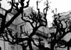 raminori (Luce-Chiara #1) Tags: palermo chiara alcamo degiovanni chiarettasikula