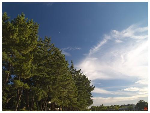 Summer Sky 080807 #01