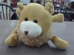 Today I won a ... (wonderferret) Tags: animal stuffed eyes k750i phonepix beady deformed