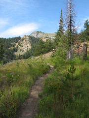080824_001-Trail up toward Wedge Mountain Ridge (Blewett (historical), Washington, United States) Photo