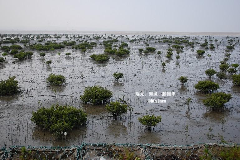 20080907_濕地地形