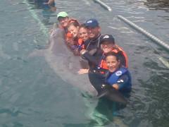 ABC Dolphin Trainer Academy 2008 (ABC Dolphin Trainer Academy) Tags: students dolphin academy