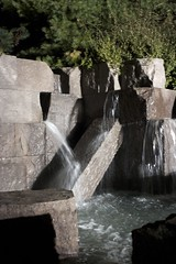 Water at the FDR Monument