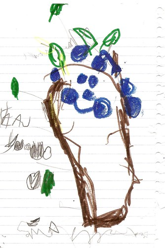 natalie's blueberry tree