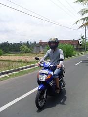 SL371942.JPG